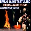 BRUJO DE LAS SOMBRAS JAIME TARTULERO 00502-40145574