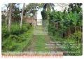 Se vende quintan en san juan de oriente-masaya