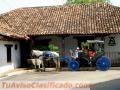 Granada Nicaragua intensive Spanish courses 2019, 2020, 2021